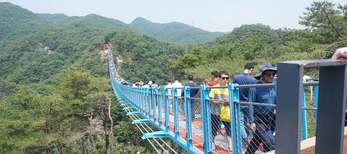 江原道/原州‧鐵索橋